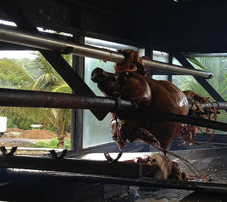 Smoke and Fury: Gorging Ourselves on Puerto Rico's Pork Highway