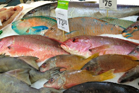 Colorful fish market!