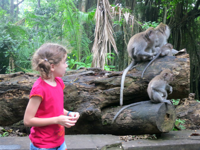 close encounter with monkey