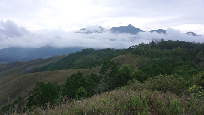 Cyclops mountain  from Ifar Gunung