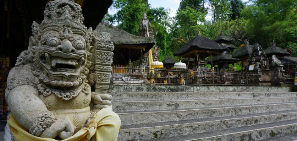 Ubud Day Trip