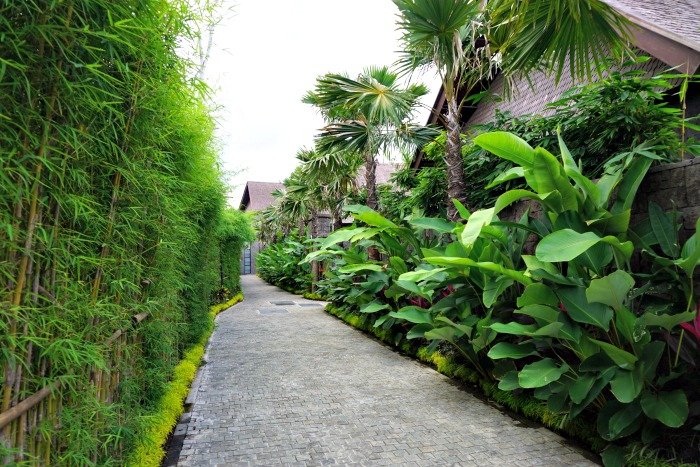 path from the lobby to the villa at The Sanctoo
