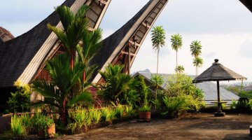 Hotels in Tana Toraja