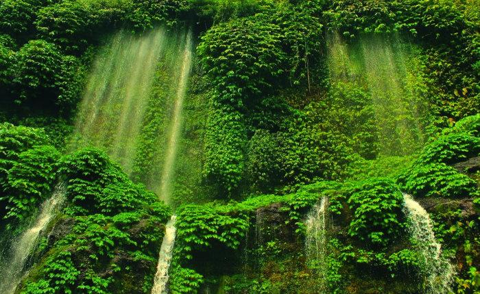 benang-kelambu-waterfall-lombok