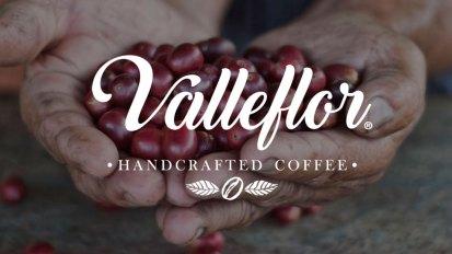 Valleflor---Disfuncional-Estudio