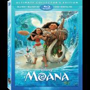 Disney Announces Moana DVD Release Date