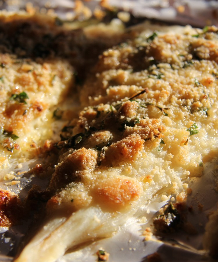 Parmesan and lemon crusted baked fish divalicious recipes for Baked parmesan fish