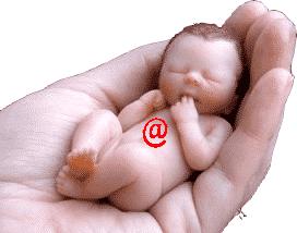 bebê mao arroba