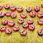 DIY Cold Porcelain Ladybug Buttons
