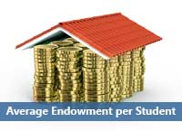 house of gold coins representing average endowment per student