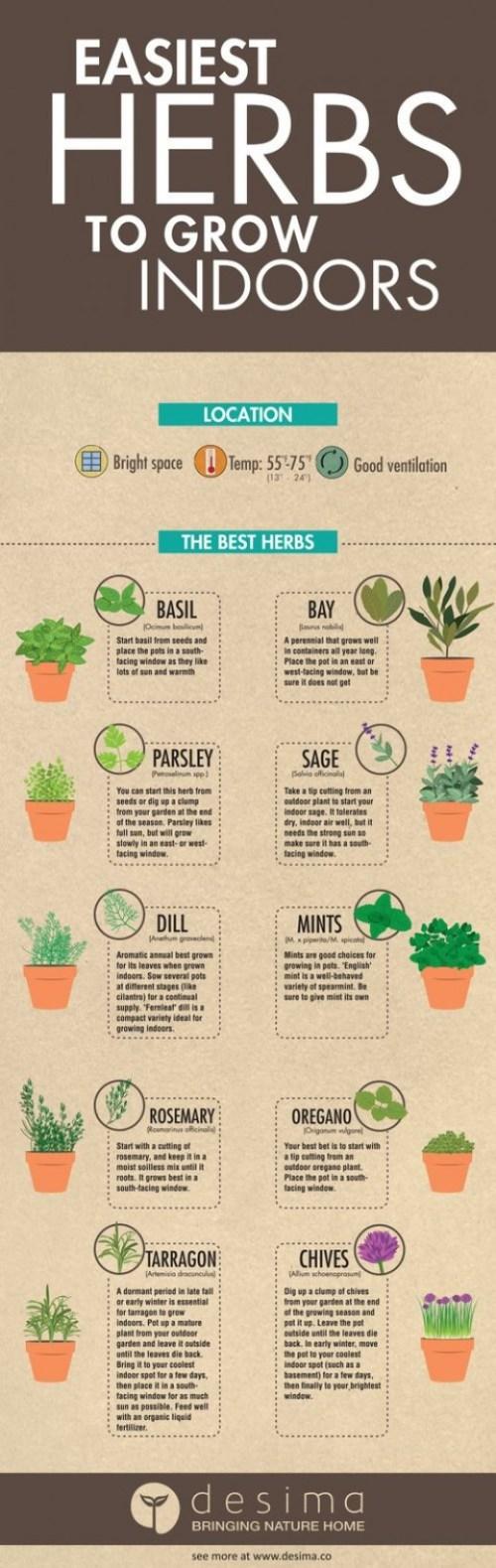 Fashionable A Pallet Diy Herb Garden Pallet Vertical Gardening Diy Craft Making An Herb Garden Out Diy Herb Garden Ideas