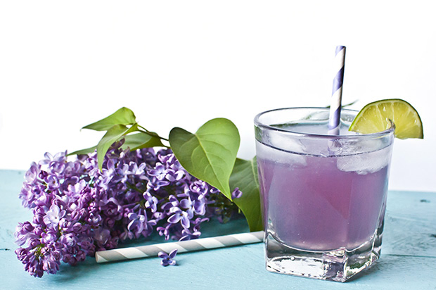 lilac spring cocktail recipe