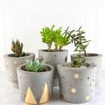 Make Concrete and Gold DIY Plant Pots