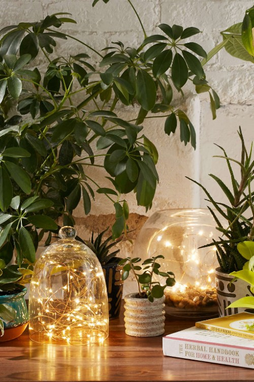 Simple DIY holiday decor ideas using white lights: cloche or vase + lights