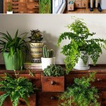 card catalogs + plants = a match made in heaven