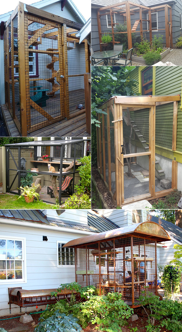 Worried about letting your cat outdoors? Build a cat enclosure to help