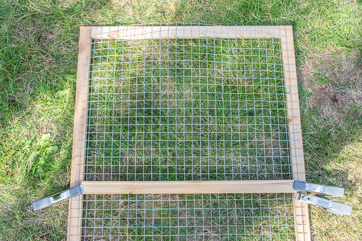 Catio construction tips and advice