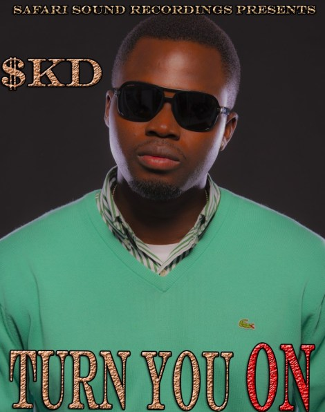 soundknockdown a k a skd turn you on artwork SoundKnockDown a.k.a SKD   TURN YOU ON