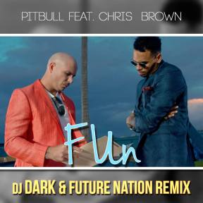Pitbull - Fun ft.Chris Brow (Dj Dark & Future Nation Remix)
