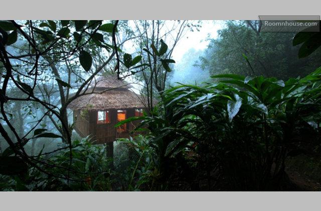 Treehouse In Thekkady