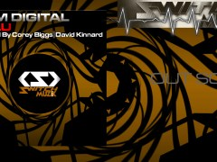 Dom Digital 'Zulu' Remixes By Corey Biggs / David Kinnard -Switch Muzik
