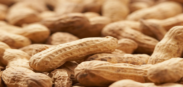 Roasted Peanuts and Acne   Anti Blemish Diet