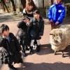 岡山っ子の定番 池田動物園に行く♩