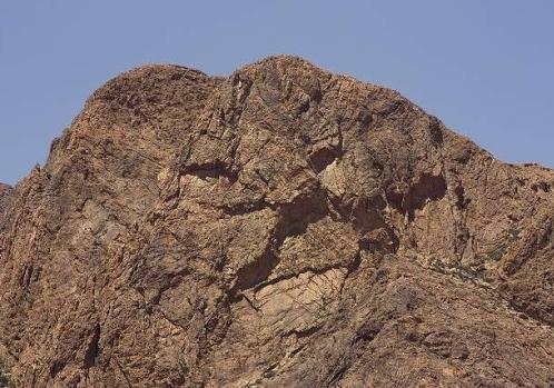 hora ve tvaru lva