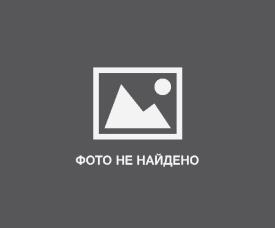 Подснежник, или Галантус (лат. Galanthus). Описание, виды и выращивание подснежников