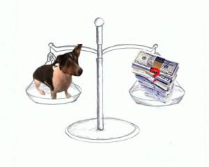 hund-geld-waage