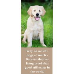 Small Crop Of Funny Dog Quotes