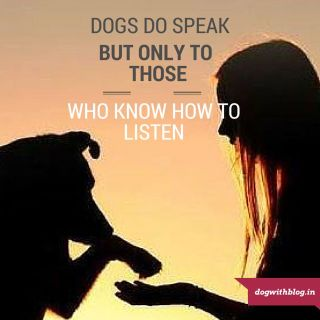 Dogs do speak, but only to those who know how to listen. Orhan Pamuk dog quote