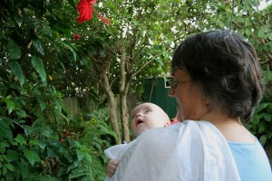 Enjoying the flowers with Granny