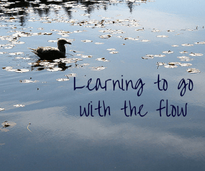 Learning to go with the flow