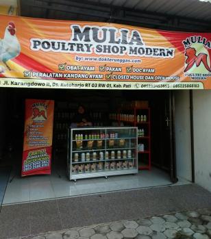 poultry shop pati