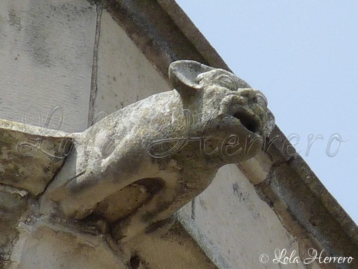 Gárgola Catedral Lleida (297)