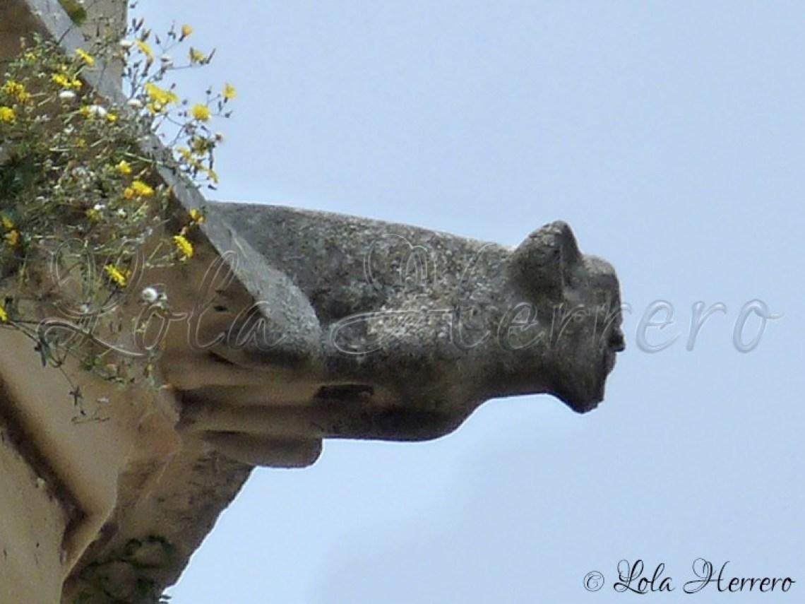 Gárgola Catedral Lleida (302)