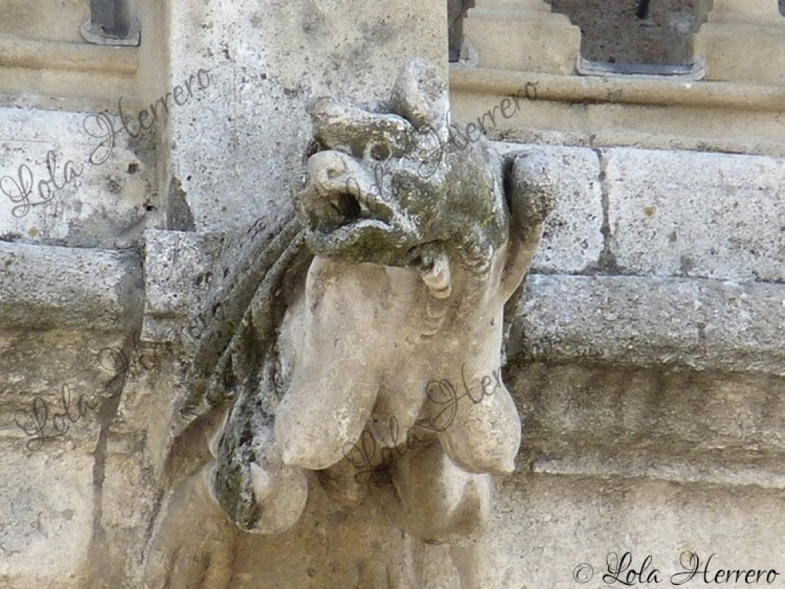 Gárgola Catedral Burgos (404)