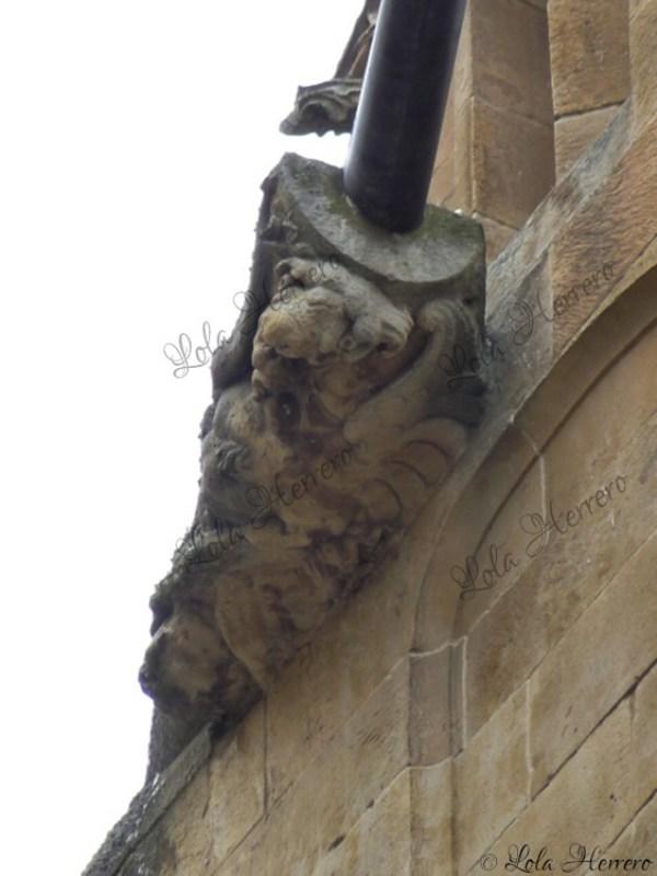 Gárgola Catedral Salamanca (382)