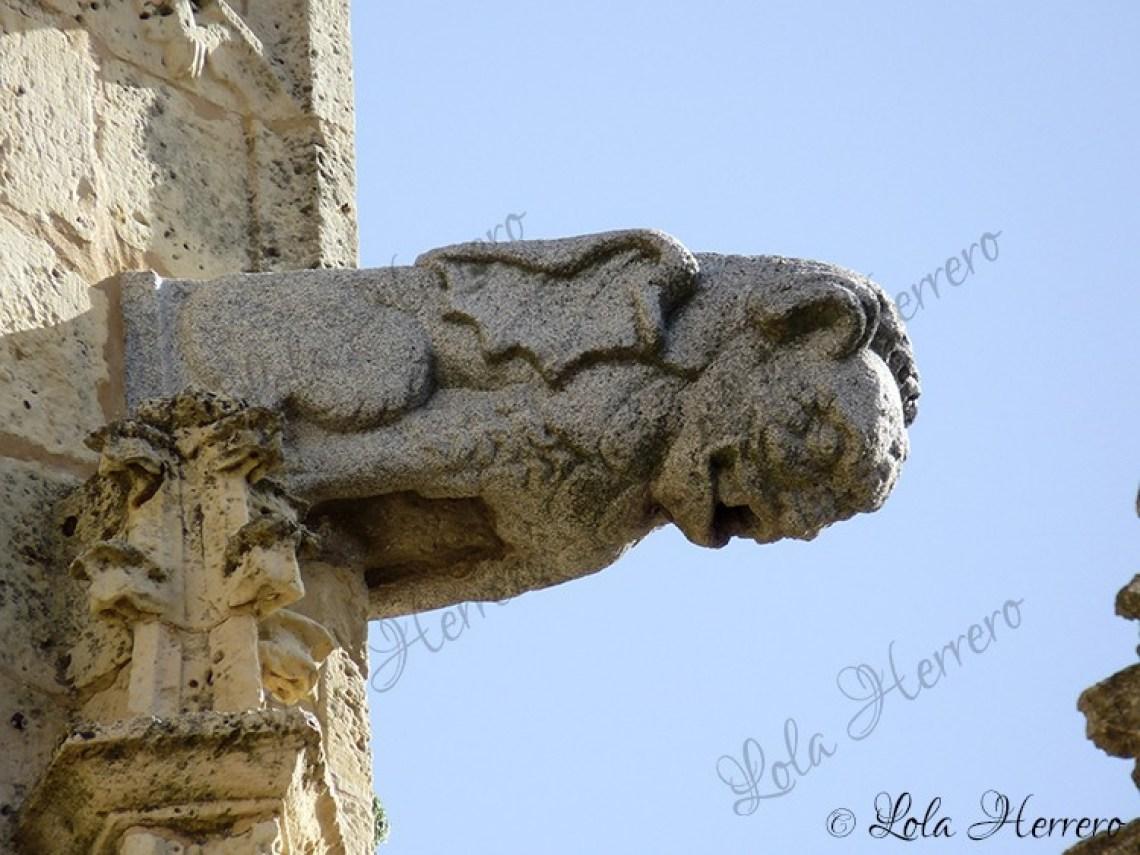 Gárgola Catedral Segovia (336)