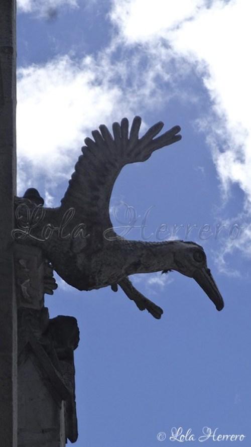 Gárgolas Quito (Ecuador) (253)
