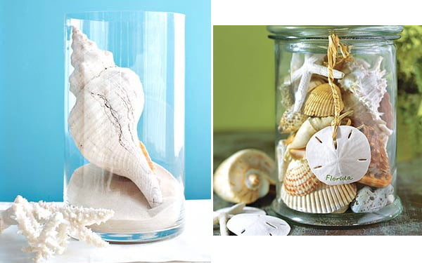 how-to-decorate-interior-with-seashells-2