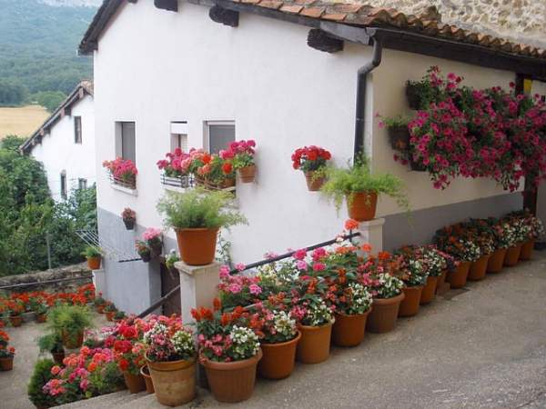 spain-house-home-flowers-pots-potted-nature