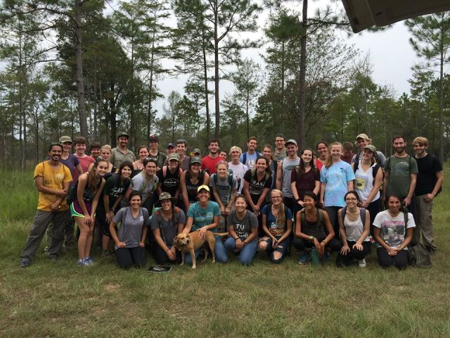 Ecology field trip to The Nature Conservancy's Abita Flatwoods Preserve.