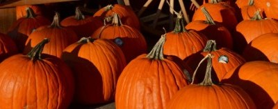 No tricks this year. Just two Hallowe'en treats for you (and make sure you keep reading for the second).