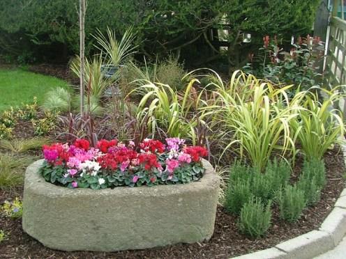 winter planters