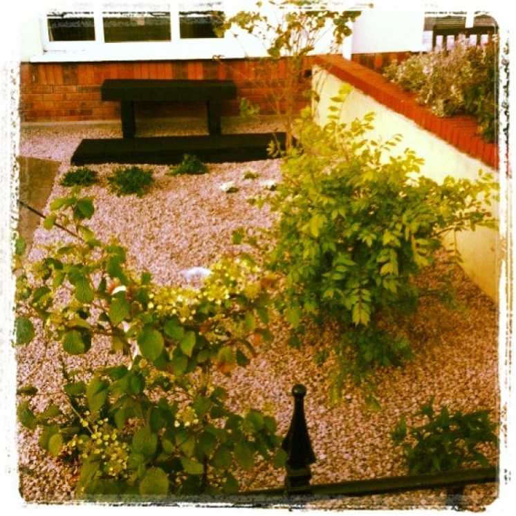 small front garden, low maintenance