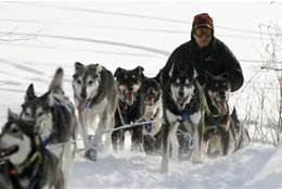 th10 Celebrate the Iditarod start: Win a hat!