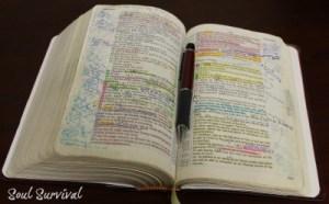 open bible mine