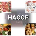 What is HACCP and what are its Principles